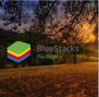 BlueStacks.